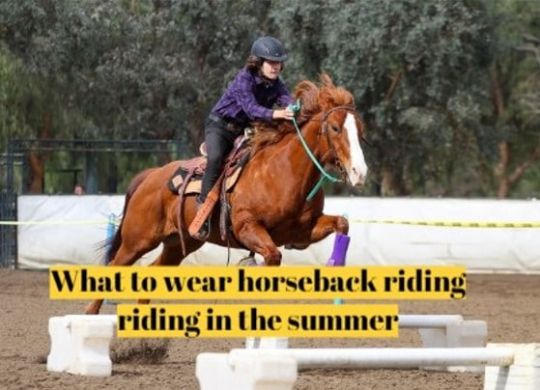 What to wear horseback riding riding in the summer